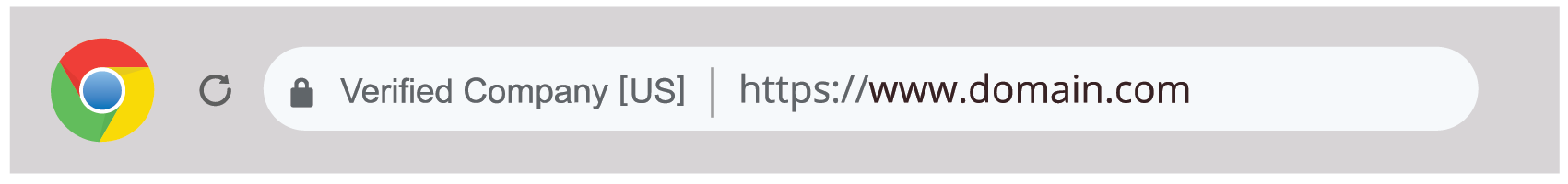 how to spot a fake website, google chrome extended validation indicator