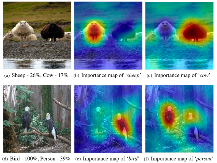 RISE explainable AI example saliency map