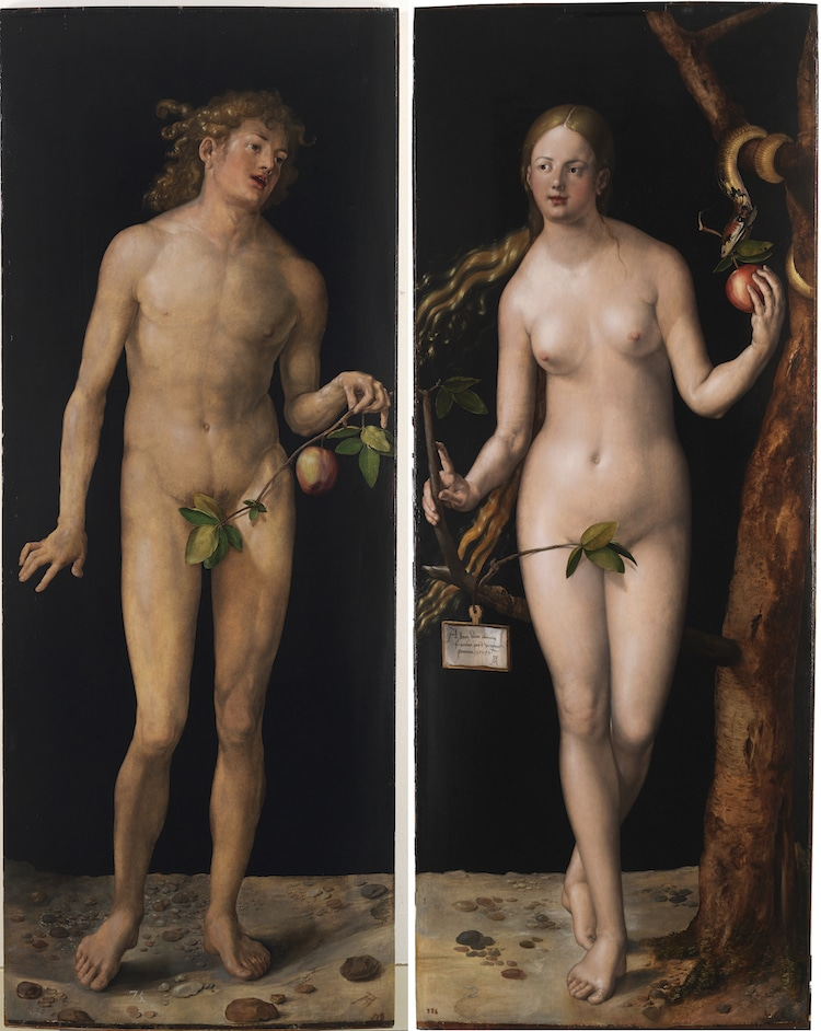 Adam and Eve Painting by Albrecht Durer