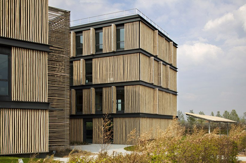 bamboo clad office building in france by monica donati