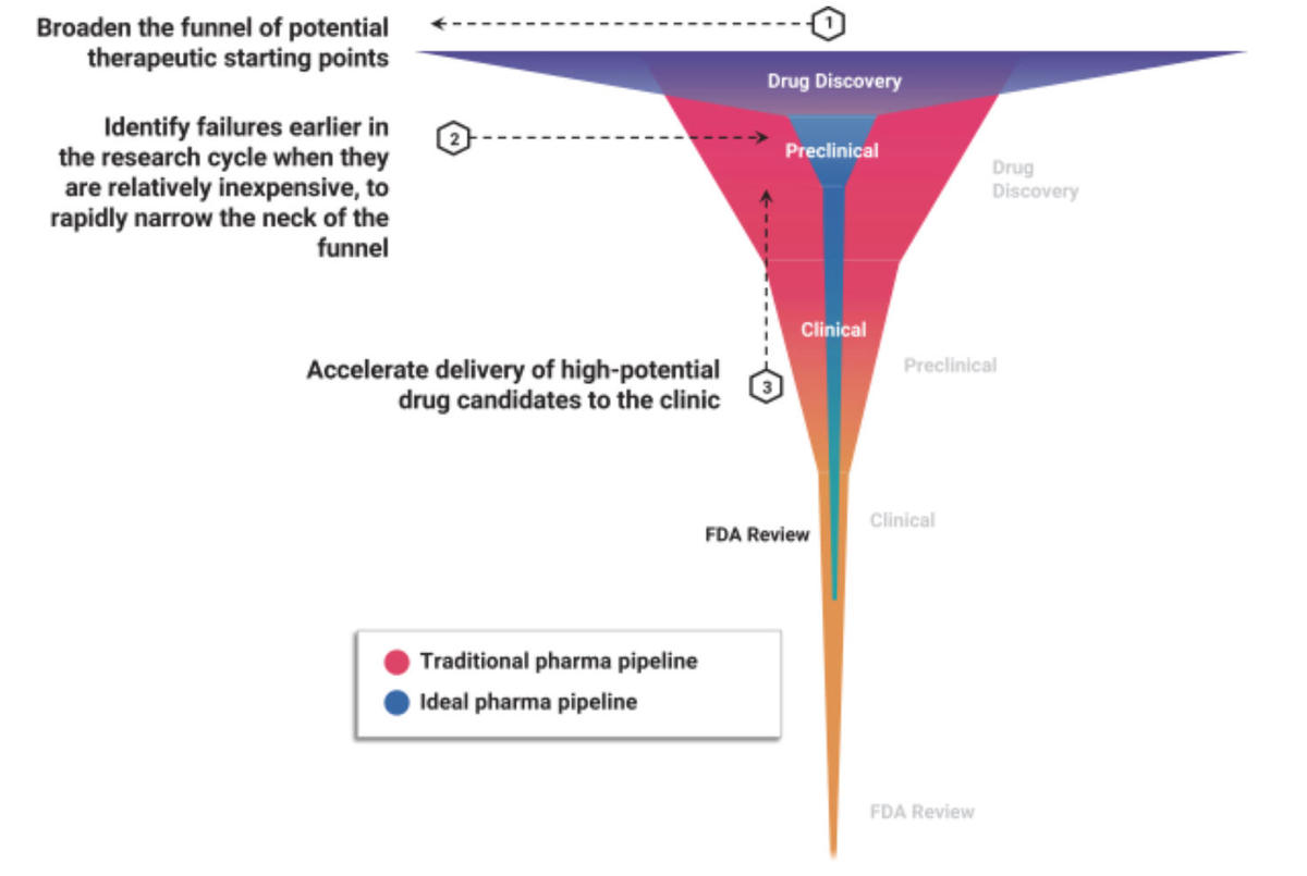 recursion-ideal-pharma-pipeline.jpg