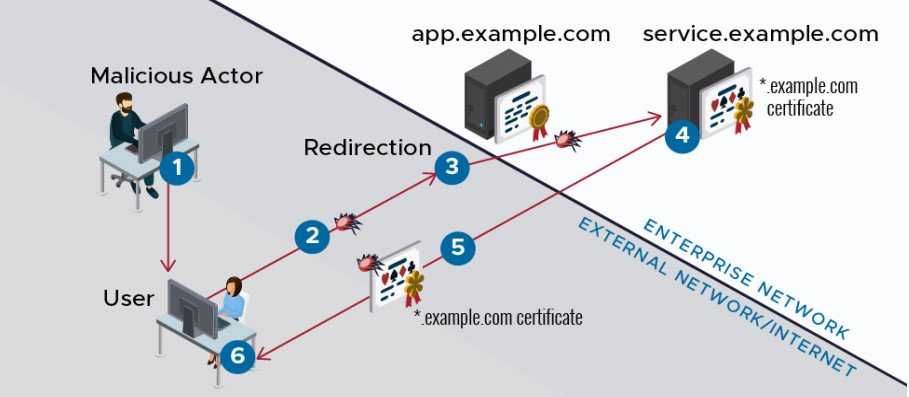 Compromising a secure web application using the ALPACA technique